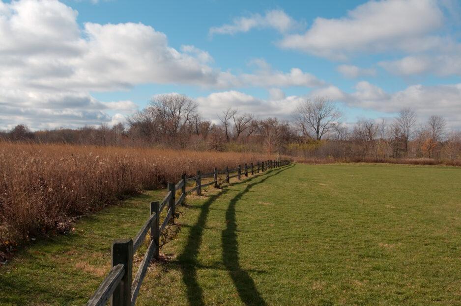 Park Fence Header Image